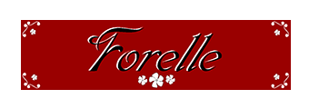 Forelle Limited